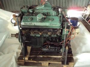 Detroid diesel - 8vf023356 - kupedo